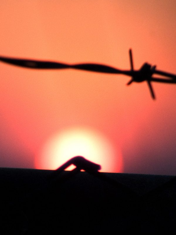photo of sunrise and barb wire taken at cherry beach in toronto